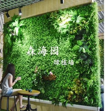 重庆仿真绿植墙